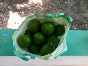 A gift of 15 avocados- one of my fav foods- that I received one afternoon! The joys of living in Haiti during avocado season!