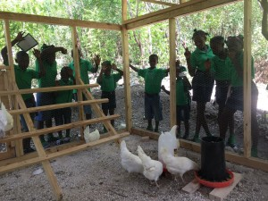 The coop has a captive audience on most days--the kiddos are super interested in the chickens!